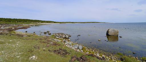 2015-06-10 006_05(Gotland)c.jpg