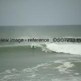 _DSC7233.thumb.jpg