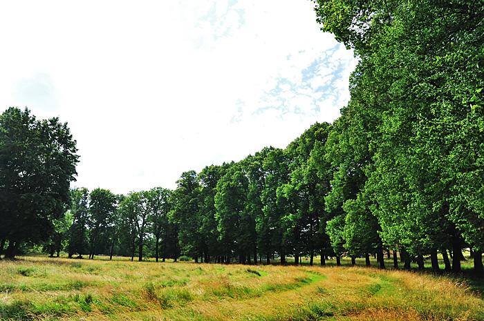 Drottningholm13.JPG