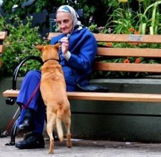 abuela-perro.art