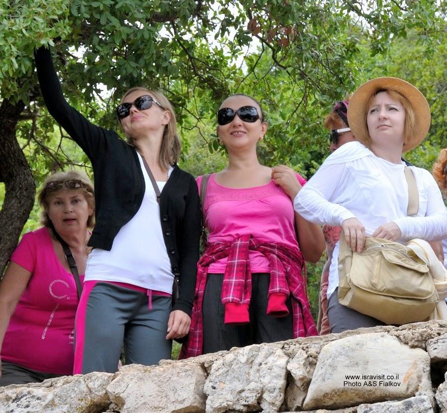 На обзорной площадке. Пешеходный поход по горе Мирон. Швиль писга Мирон. Экскурсия по Верхней Галилее. Гид в Галилее Светлана Фиалкова.