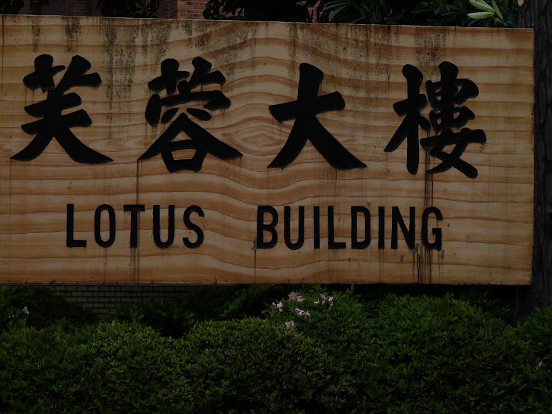 TAIWAN . Taipei De Shandao Temple jusqu à T 101 à pied... - P1160272.JPG