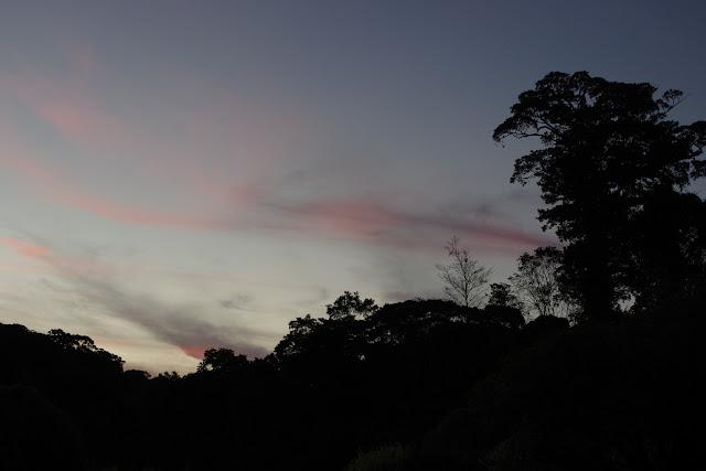 Patawa (Montagne de Kaw), 26 octobre 2012. Photo : J.-M. Gayman