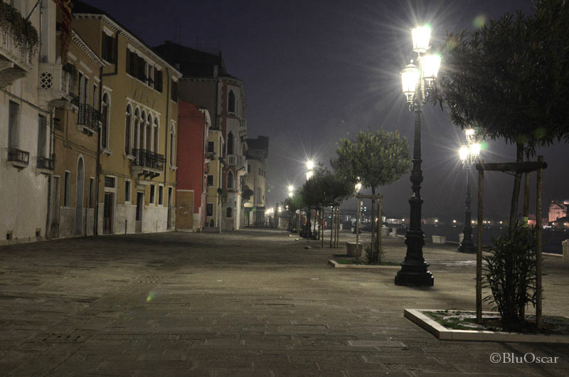 Alba 16 01 2012 N 20