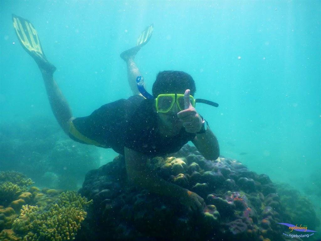 pulau pari, 23-24 mei 2015 19