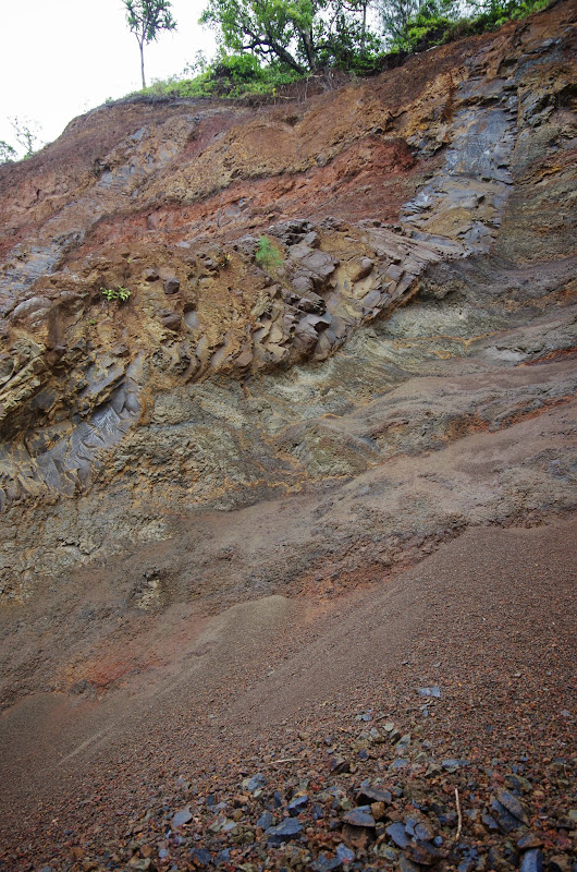 06-25-13 Annini Reef and Kauai North Shore - IMGP9305.JPG