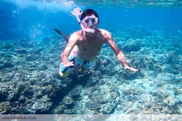 Snorkeling di Perairan Laut Pulau Komodo