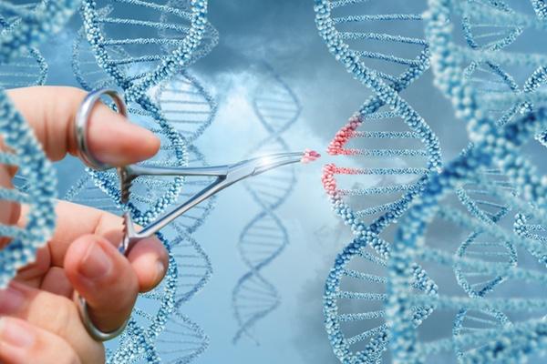 CRISPR:  future of gene editing