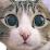 MAKO0MAKO0's profile photo