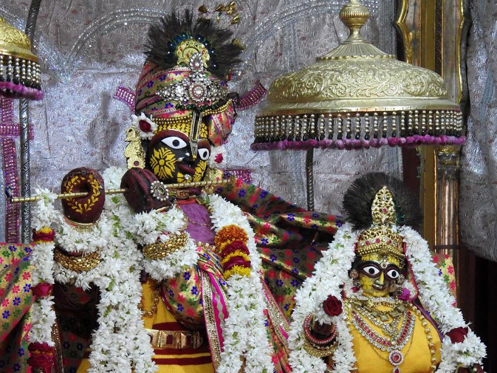 Radha Govind Devji Deity Darshan 10 Jan 2017 (12)