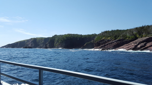 Gorgeous Newfoundland coastline. Soon, we would see whales and puffins!