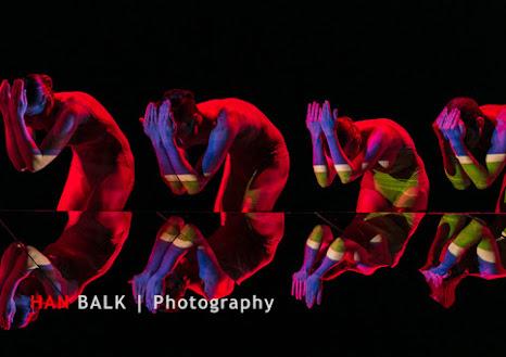 Han Balk Wonderland-7352.jpg