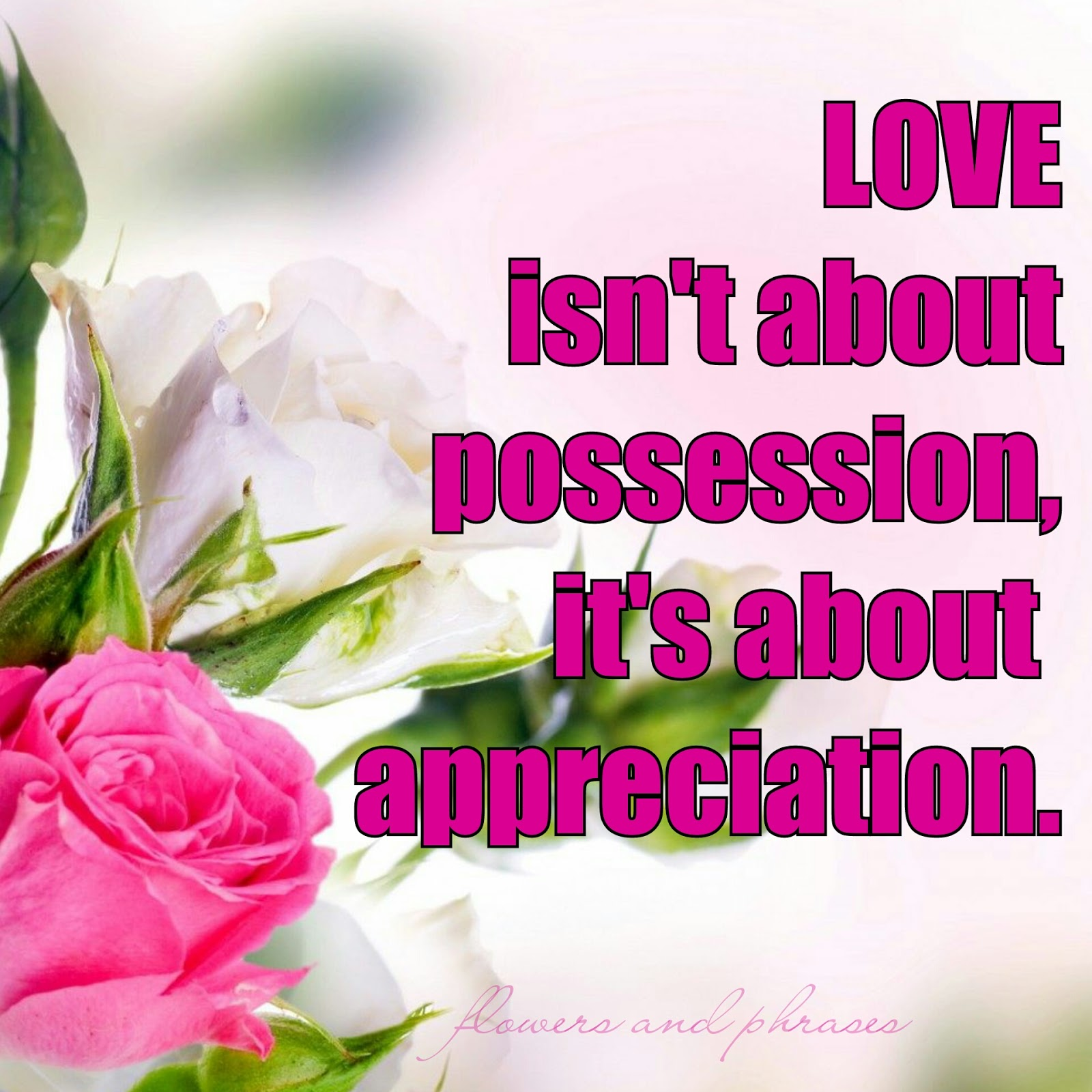 Flowers And Phrases Beautiful Love Quotes