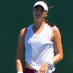Ajla Tomljanovic - 2015 Bank of the West Classic -DSC_4005.jpg