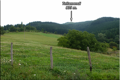 Tellamendi visto desde la carretera al caserío Mazkiano