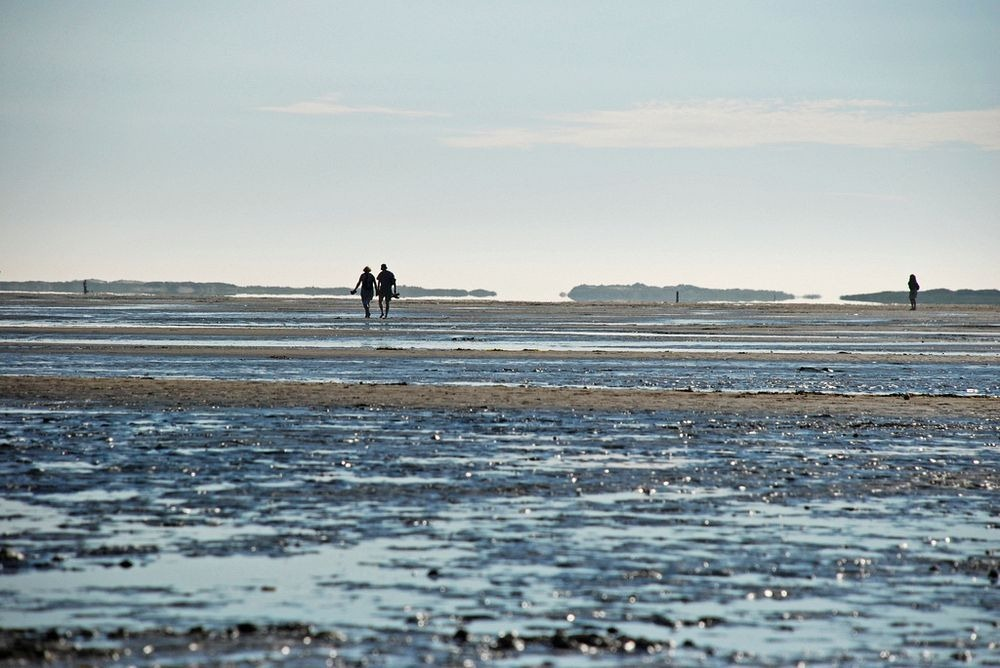 wadden-sea-hiking-7