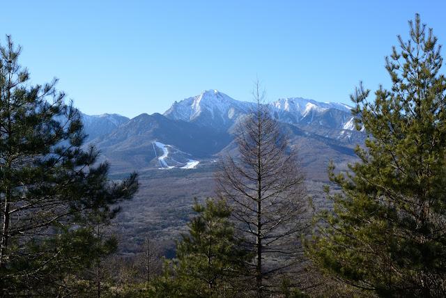 飯森山から八ヶ岳