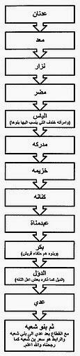 شجرة قبائل شعبة كنانة تصميم الباحث ثامر الجحدلي الكناني 84frm.jpg