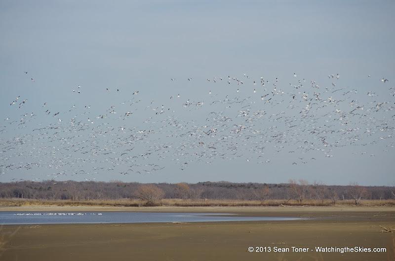 01-19-13 Hagerman Wildlife Preserve and Denison Dam - IMGP4104.JPG