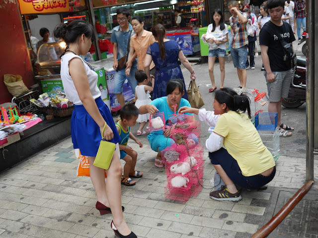 rabbits in small cages for sale on a sidewalk in Hengyang, Hunan, China