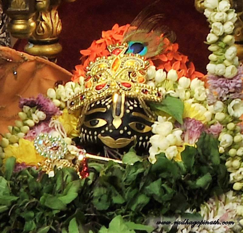 ISKCON Chowpatty Deity Darshan 22 Dec 2015 (8)