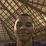 RIVALDO DOS ANJOS DA CONCEIÇÃO's profile photo