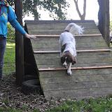 Survival voor Baas en Hond 2012 - DSC_0415.JPG