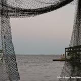 02-07-15 Corpus Christi & South Padre Island - _IMG0502.JPG