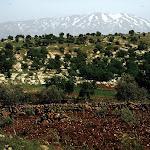 Rachaya (Liban)