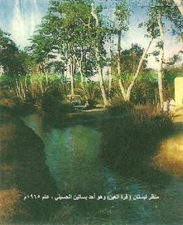 بستان قرة العين ــ الحسيني لحج عام 1965_thumb[24]