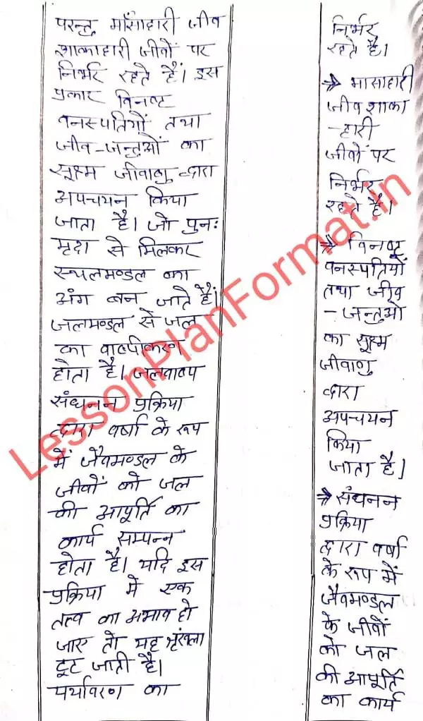 B.ed Geography Lesson Plan in Hindi