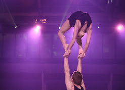 Han Balk Unive Gym Gala 2014-0735.jpg