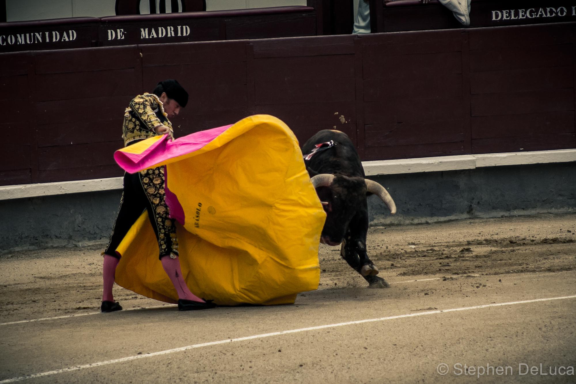 Photo: Bullfight-4