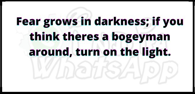 Fear grows in darkness; if you think theres a bogeyman around, turn on the light.