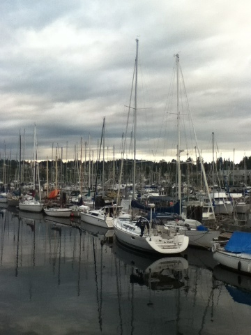 Boats moored in marina