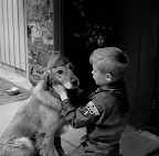 Boy scout in uniform with dog weari Photo credit: Reflexstock/Superstock RM/SuperStock