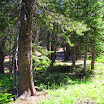 cannell_trail_IMG_1756.jpg