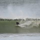 _DSC7629.thumb.jpg