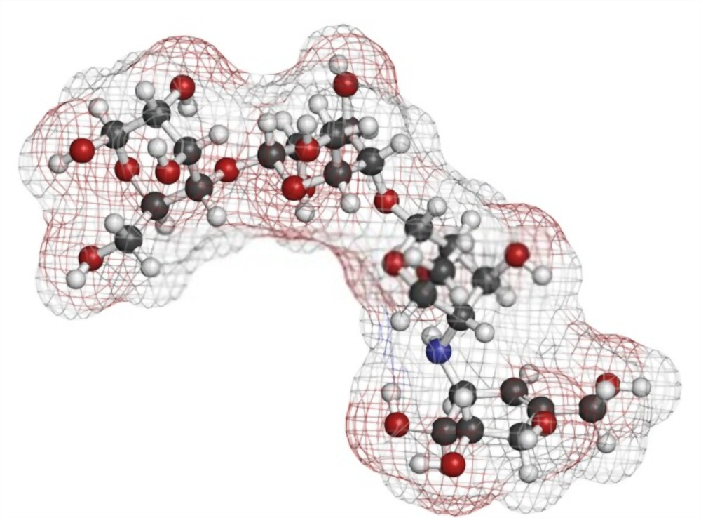 acarbose combate os efeitos da alfa amilase