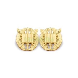 Курсанти золота метал ЗСУ \Емблеми на комір парадної та повсякденної форми одягу