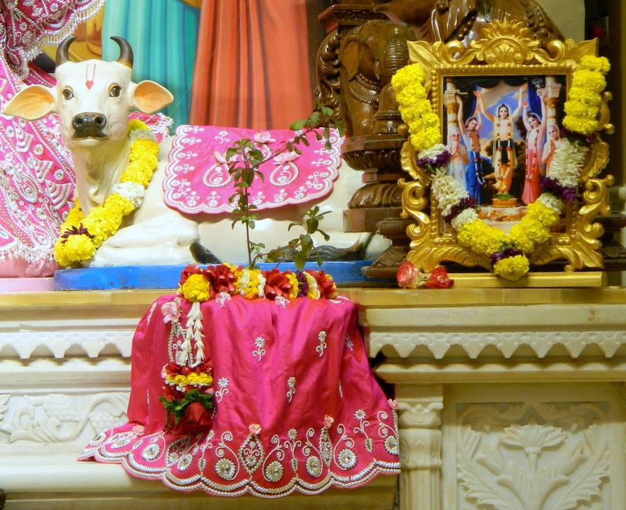 ISKCON Pune NVCC Deity Darshan 08 Jan 2017 (8)