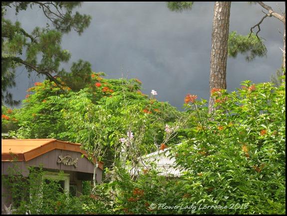 06-29-stormy