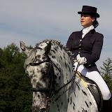 Paard & Erfgoed 2 sept. 2012 (116 van 139)