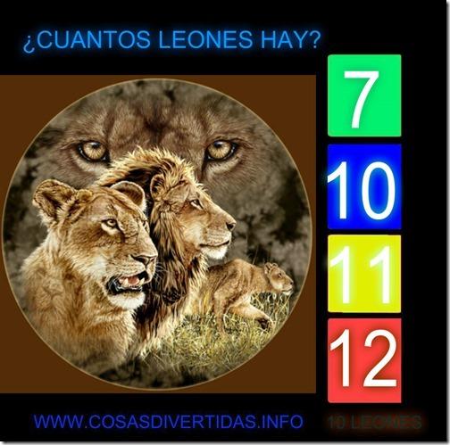 leones cosasdivertidas