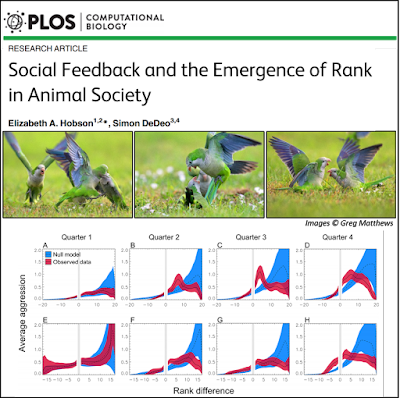 "Sept 2015: My paper ""Social feedback and the emergence of rank in animal society"" was published in PLOS Computational Biology. The paper is the result of some really fun collaborative work with Simon DeDeo, where we ask: what do individuals understand about rank, when do they understand it, and how do they figure it out?"