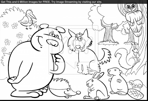 Awesome Forest Animals Coloring Pages With Rainforest Coloring Pages And  Rainforest Coloring Pages To Print