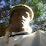 Nkosinathi Masuku's profile photo