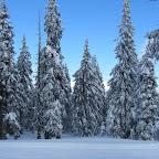 16.1.2012privátní snowboardová a lyžařská výuka u Černé boudy