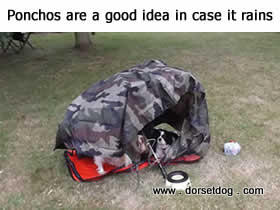 Genuine military ponchos are lightweight, pack down really small to carry, and are very waterproof