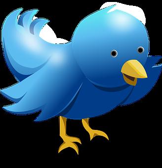 chrome extension twitter